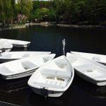 月寒公園のボート情報まとめ 料金や営業時間 最も近い駐車場等詳しくご紹介します